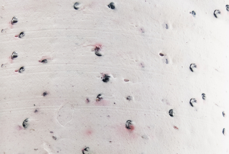 Blackberry Butter cream Cake Background Pattern