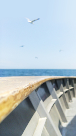 Wooden hand ship rail with ocean view and seagulls flying