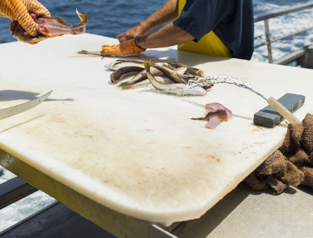 Fisherman holding sliced fish over cutting board.