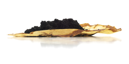 Low view of isolated brewed ground coffee filter paper on a white background. Banco de Imagens