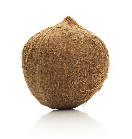 Isolated Coconut Banco de Imagens