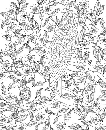 printable coloring pages: hand drawn bird coloring page