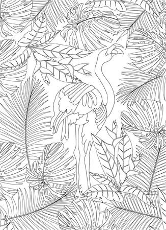 gente adulta: Colorear pájaro dibujado a mano
