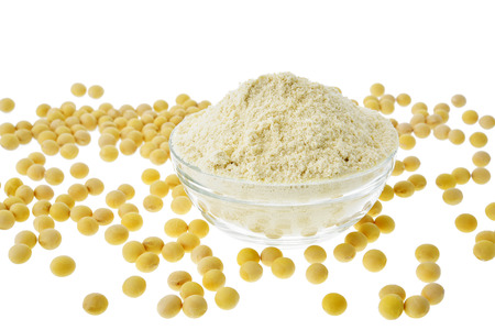 タンパク質大豆たん白質と大豆 写真素材