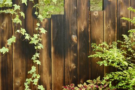 木製の壁と植物