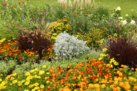 Garden with flowerbed and colorful plants Stok Fotoğraf