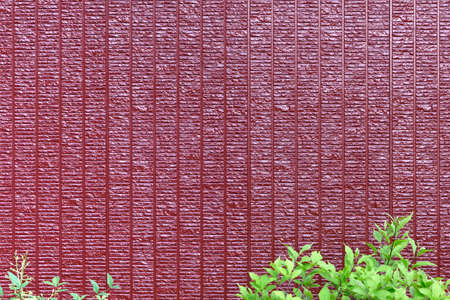 Decorative red wall and plants