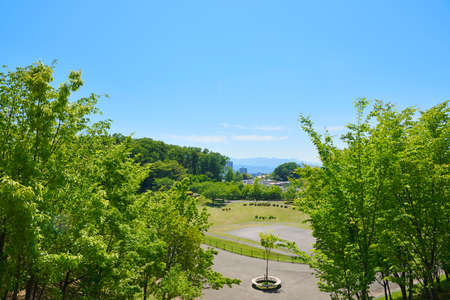 Fresh green landscape, park and residential area 写真素材