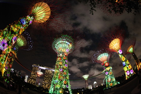 artificial lights: Gardens by the Bay , Singapore Editorial