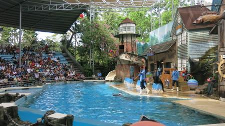 Safari Zoo, Bangkok