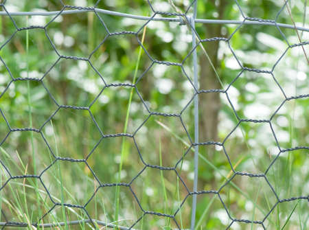 Chicken wire fence close up photo
