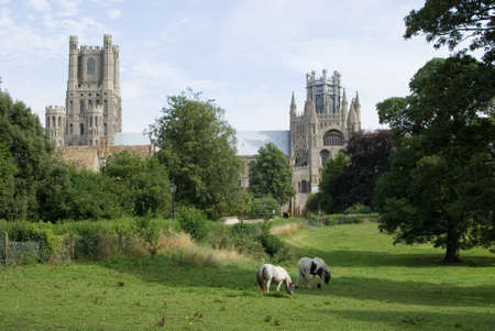 Ely Cathedral photo