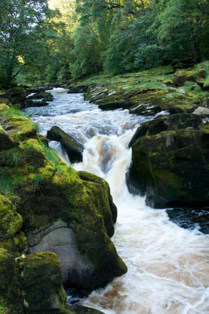 wharfedale: The Strid at Bolton Abbey