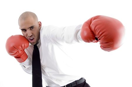 businessman in action wearing boxing gloves on an isolated background photo