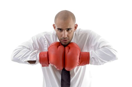 businessman posing with boxing gloves on an isolated white background photo