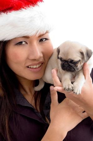 woman with cute puppy and christmas hat with white background Stock Photo - 3875031