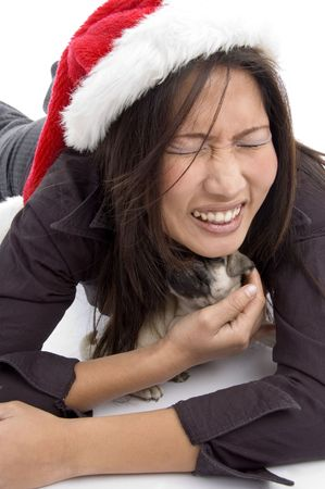 female with christmas hat and playing with pug with white background Stock Photo - 3875134