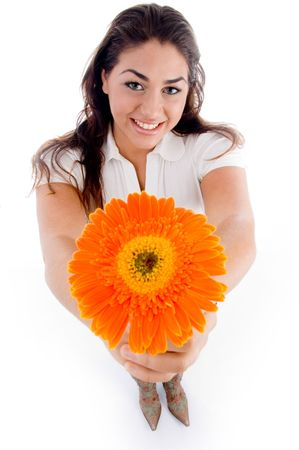 high angle view of woman showing flower with white background photo