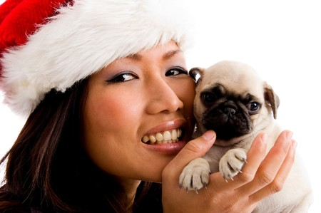 portrait of smiling woman with christmas hat and puppy on an isolated background Stock Photo - 4022226