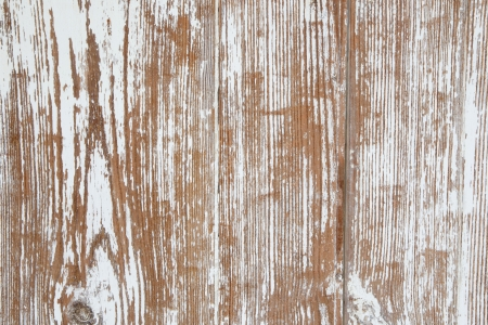 Old wooden shabby chic white background in country style  photo