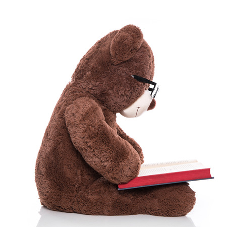 toy story: Teddy bear wearing glasses and reading a christmas story isolated on white  Stock Photo