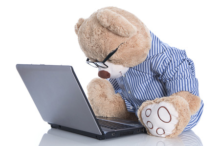 Teddy bear with glasses looking at lap top isolated on white  photo