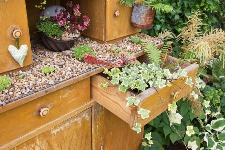 muebles antiguos: Armario antiguo con flores que crecen en su interior para tarjetas de felicitación.