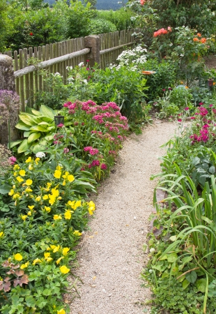 garden path: Flowers and path in the garden - outside.