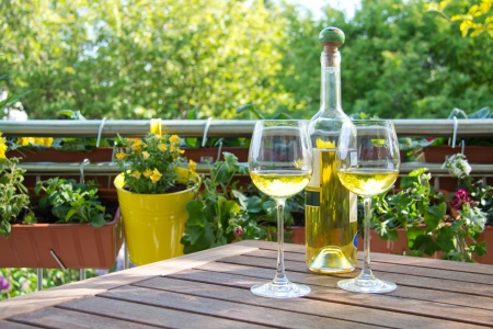 white wine bottle: White wine served for two in garden - outside