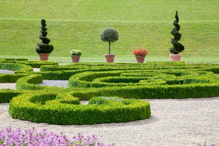 modern garden: Modern asian garden with colorful flowers and boxwood - road - outside, outdoor