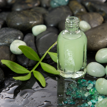 essences: Natural oil from plant essences - massage oil or body lotion