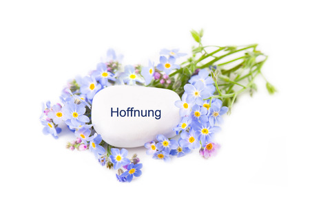 unforgettable: Hoffnung - Hope - Unforgettable Love - Blue flowers with stone Stock Photo