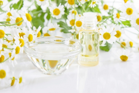 Chamomile essence and a bowl of water Stock Photo - 24655394