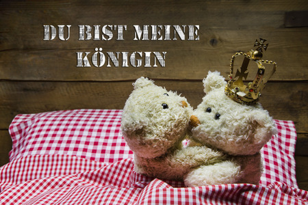 humorously: Two beige teddy bears in love lying in checkered bed - concept for greeting card   Stock Photo