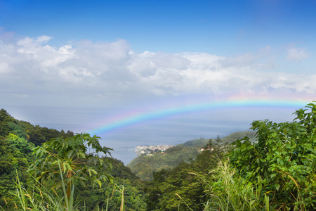 dominican republic: Beautiful rainbow over the rainforest at the island dominican republic.