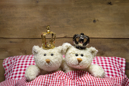 humorously: Two beige teddy bears lying in checkered bed with crowns - concept for love, wedding, honeymoon. Stock Photo
