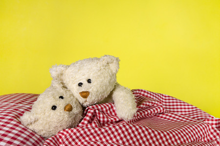 Teddy couple cuddling in the bed. photo