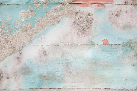 drift: Old wooden shabby chic background with aged calcification of mussels and fossils in turquoise pastel colors.