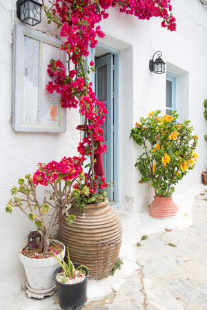 bougainvillea: Architecture on the Cyclades. Greek Island buildings with her typical blue doors and white houses. Stock Photo
