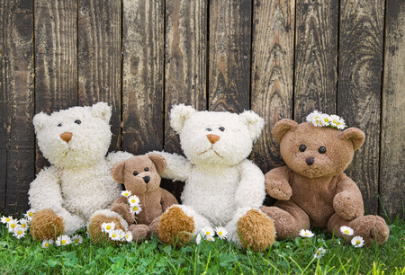 humorously: Happy family of teddy bears on wooden background in spring or summertime.