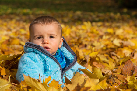 Cute little baby boy sitting in the maple leaves. Concept for a family in autumn. photo