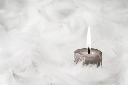 One gray burning candle on white background with feathers.