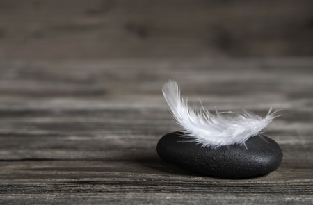 White feather on a black stone: idea for a condolence card or balance conecpt.