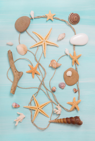 vacancies: Arrangement of different shells on blue or turquoise wooden background. Souvenirs of vacancies.