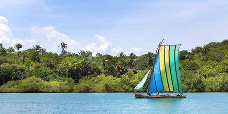 mangrove forest: Sail boat in the amazon of brazil: Rain forest near Salvador in the Bahia de Todos. Landscape with a traditional handmade boat of wood. Stock Photo