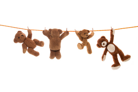 humorously: Hanging team of teddy bears on a clothing line with pegs.