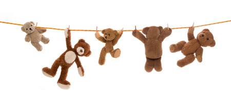 Hanging team of teddy bears on a clothing line with pegs.