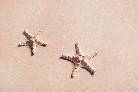 exotically: Summer background: starfish on the beach in the sand. Stock Photo