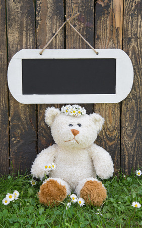 humorously: Lonely teddy bear sitting in the green in summertime with a wooden sign for a advertising message.
