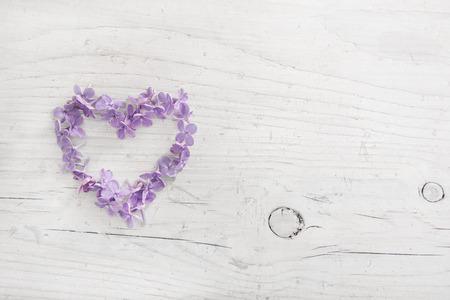 C?ur de violette ou pourpre lilas fleur sur fond blanc bois usé.